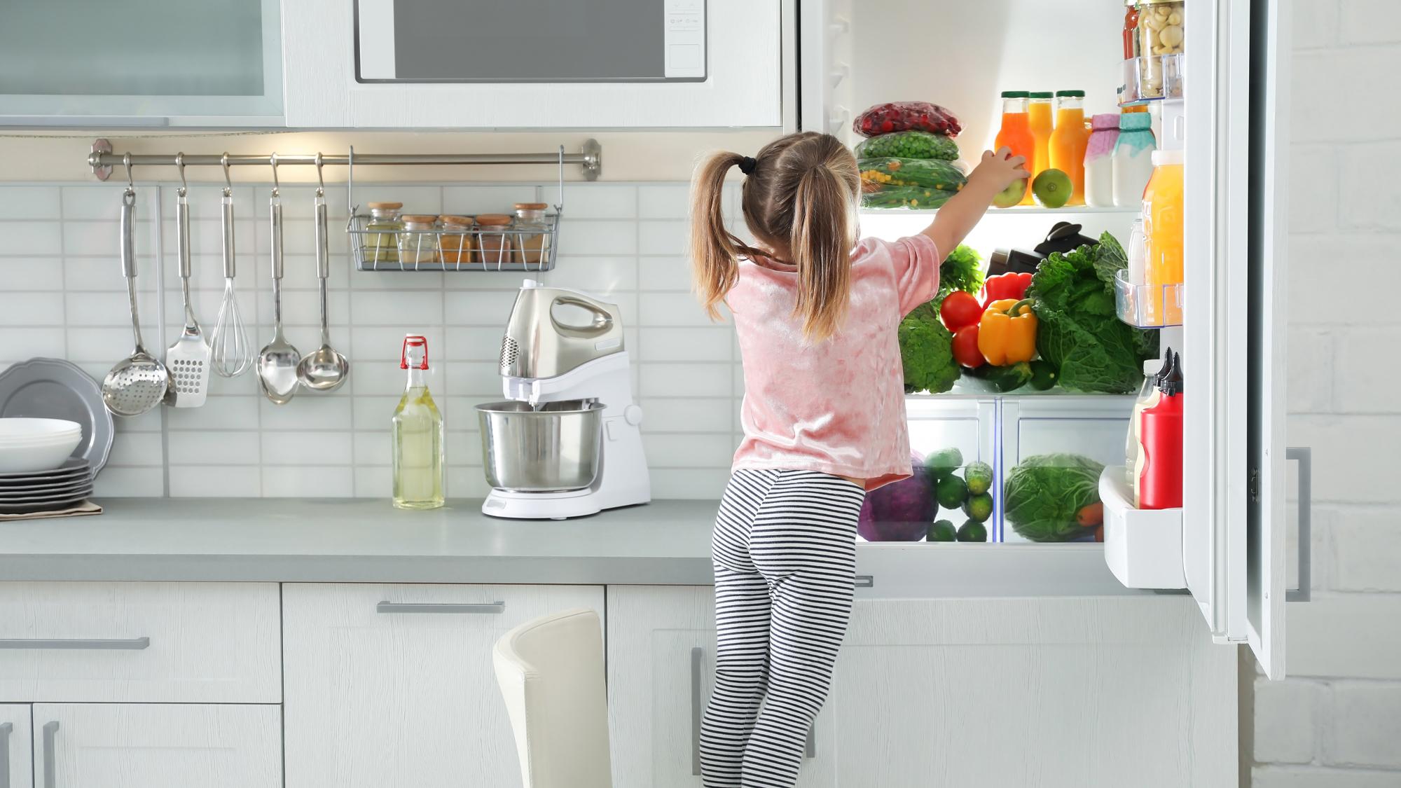 frigo pour famille nombreuse